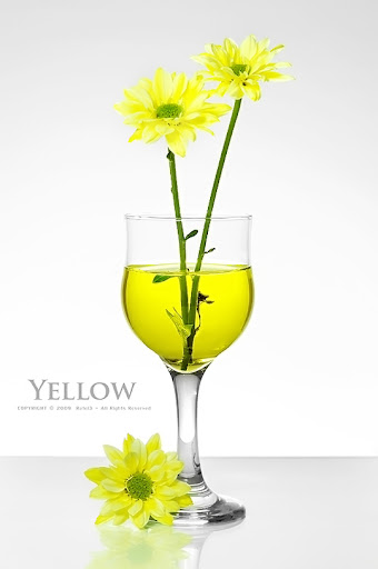 Yellow by Rafei3 Colors Around Us: Yellow Photography Inspiration