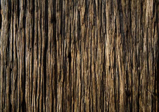 Wood Texture by xNickixstockx 80+ Free High Quality Wooden Texture Packs