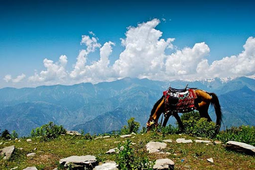 Shogran+ +Paya+Meadows+Top The Beauty of Pakistan: 70 Amazing Photographs