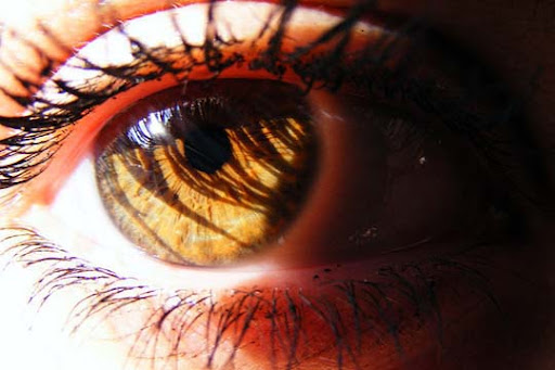 Reading+your+soul 30+ Mesmerising Macro Photos of the Human Eye | Photography Inspiration