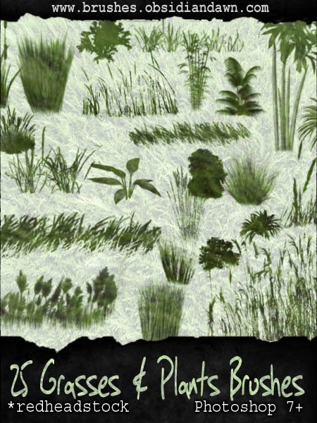 Grasses N Plants GIMP Brushes by Project GimpBC 1500+ Free GIMP Brushes Packs for Download