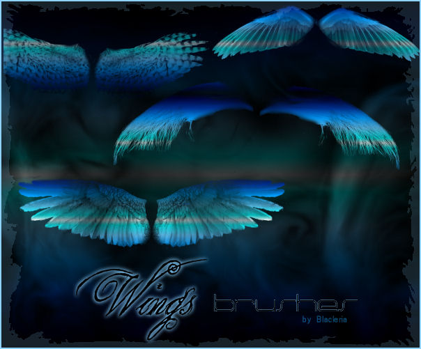 Wings Brushes Gimp by BlaclyStuff 1500+ Free GIMP Brushes Packs for Download