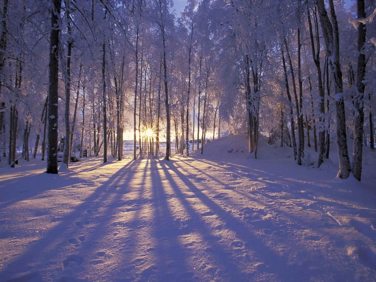 Фарватер знаний зима