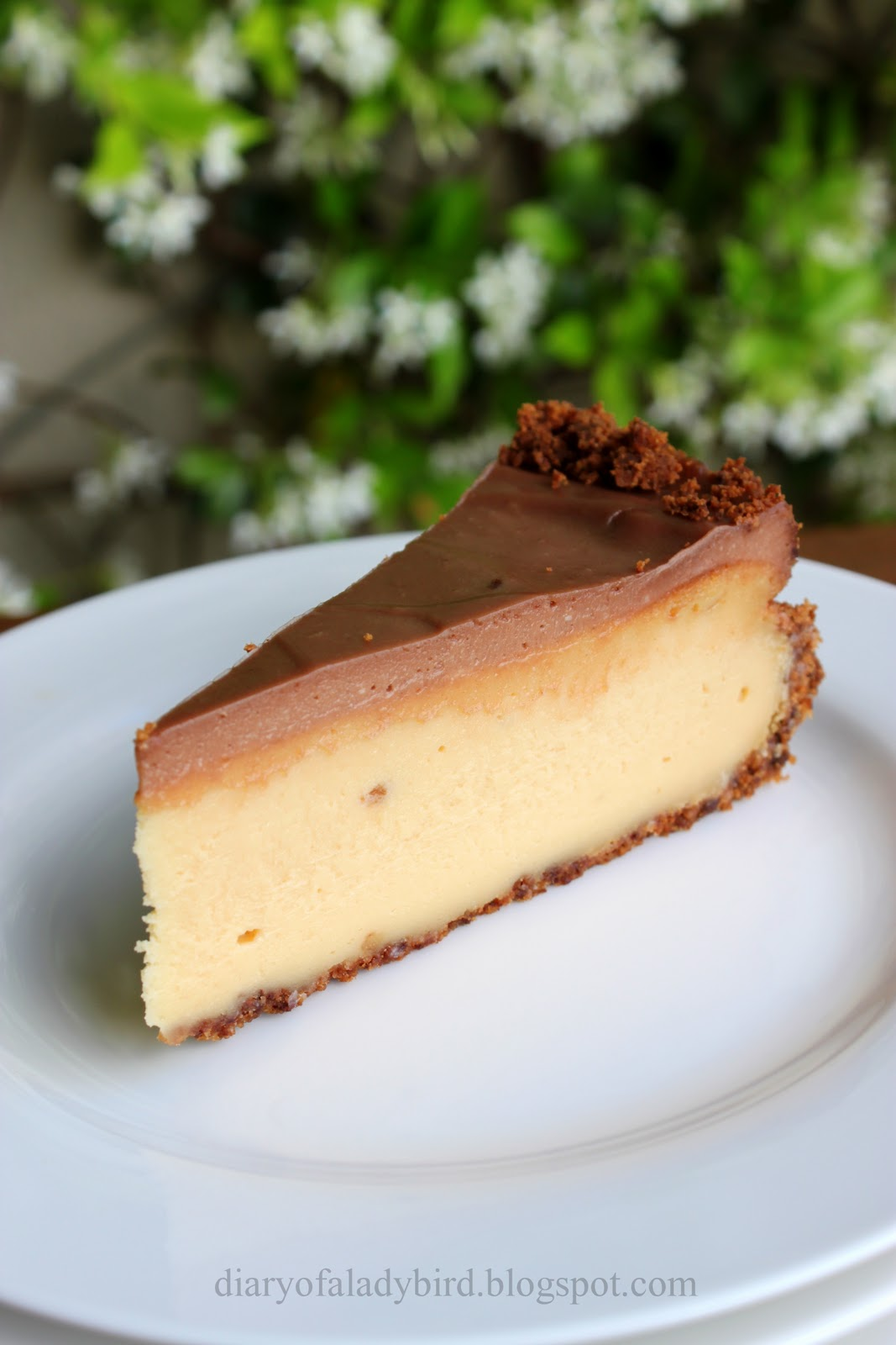 how to make a cheesecake base with digestive biscuits