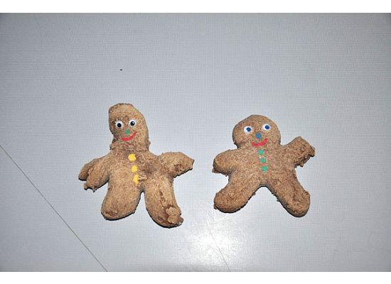 [gingerbreadman.jpg]