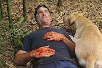 Jack near death with dog from Lost