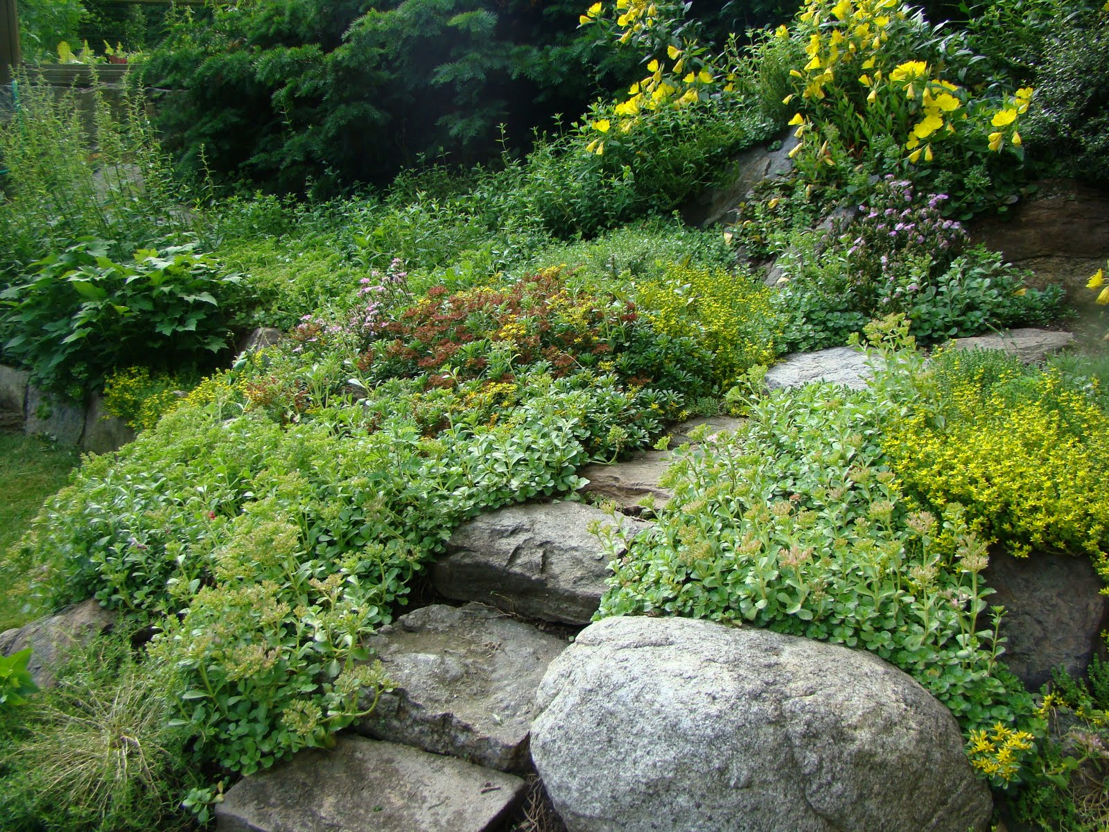 Make a rock garden for Landscaping with rocks