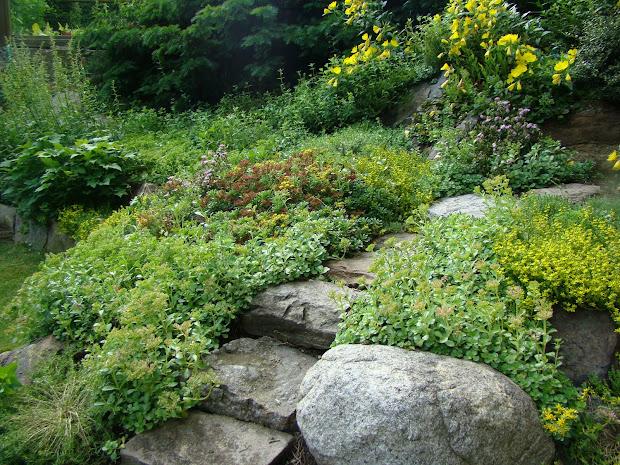 rock garden ideas landscape
