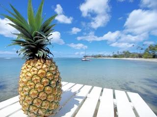 http://4.bp.blogspot.com/_5xbLgg72CBs/TBBF6PSxeuI/AAAAAAAAHtM/E6vxKidSxzw/s640/pineapple+(1).jpg