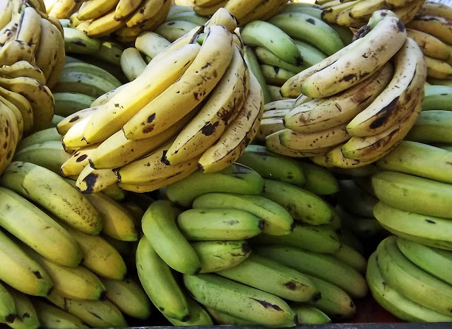 stock photo of bananas