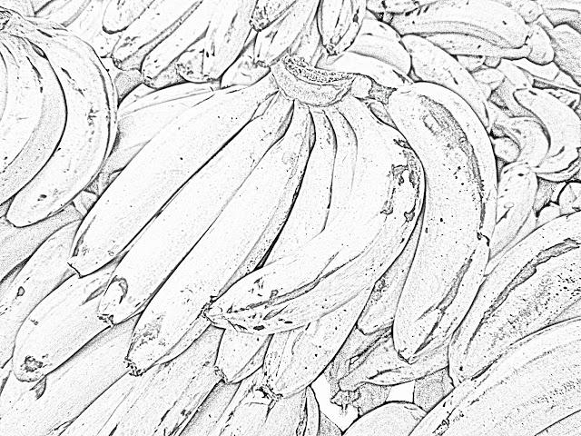 sketch of bananas