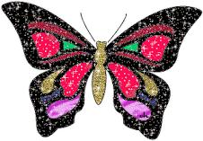 Mariposa regalo de Nana