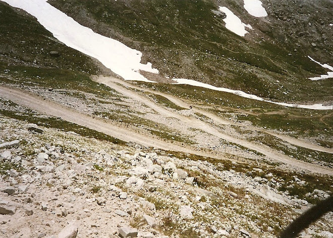 The Stella Alpina Route