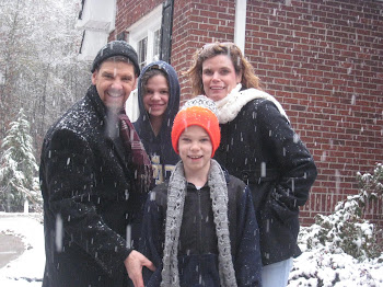 Winter 2010 (White Christmas in GA)