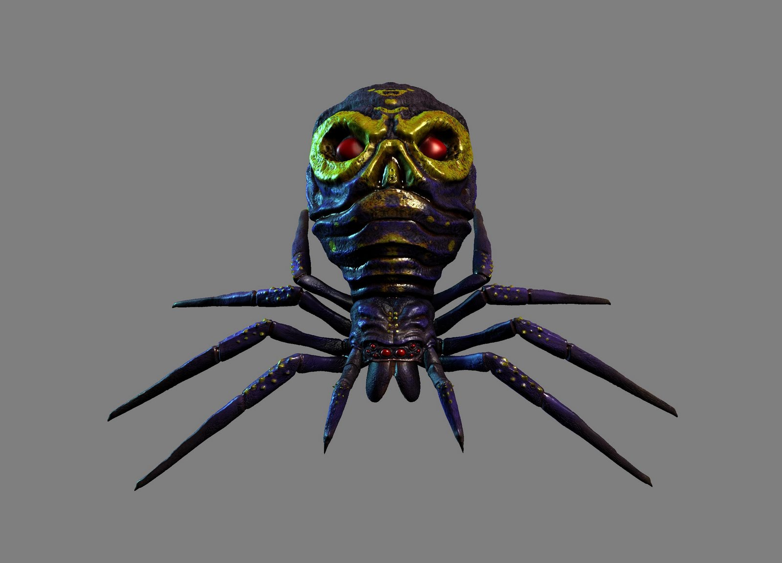http://4.bp.blogspot.com/_62G9eWS4FfQ/TFyaPjT_Y6I/AAAAAAAAACc/Hp2SpHK2UXc/s1600/spiderSkull.jpg