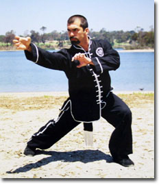 A Chinese kungfu style  Choy Dragon Style Kung Fu Moves