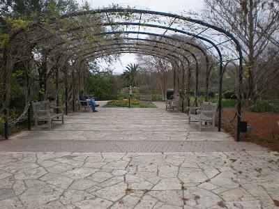 Welcome san antonio texas visiting botanical gardens in winter