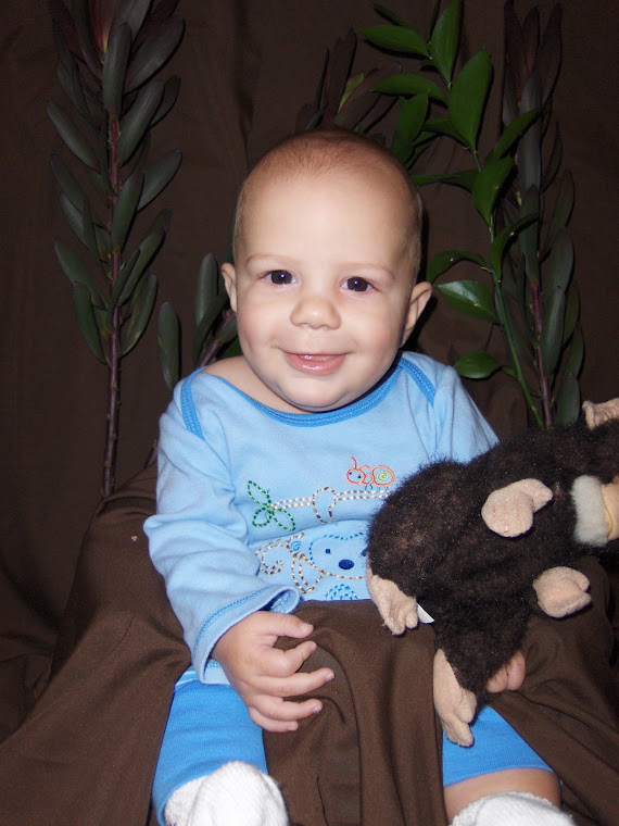 Little monkey Maverick