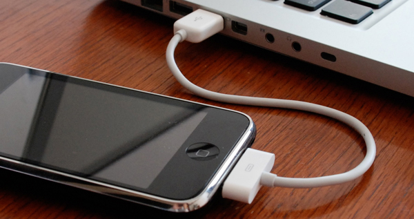 CableJive  iStubz mini USB cable for iPhone