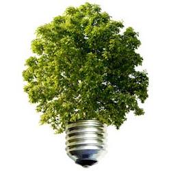 Cuidemos el medio ambiente!