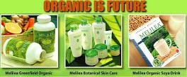 Peluang Bisnis Makanan Organik akan menjadi TREND SETTER