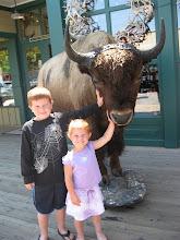 Holy Buffalo!