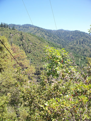 Life Behind the Redwood Curtain.........: DEVILS ELBOW