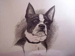 Pet Portraits by Jann Alexander-McCullough