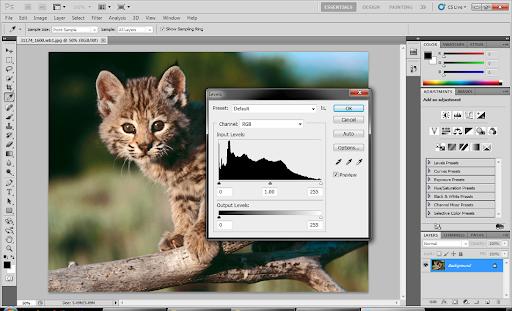 Adobe photoshop cs5 extended v12 0 keygen patch