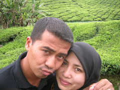Cameron Highland with Love