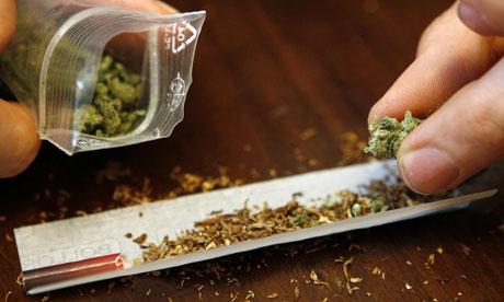 cannabis Cannabis, sus efectos nocivos