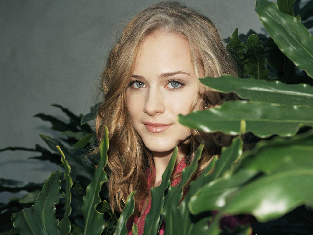 http://4.bp.blogspot.com/_6A8j2EQmANk/TJLi976Az0I/AAAAAAAAQmA/oNSn3bRc79Q/s1600/Evan-Rachel-Wood-18.JPG