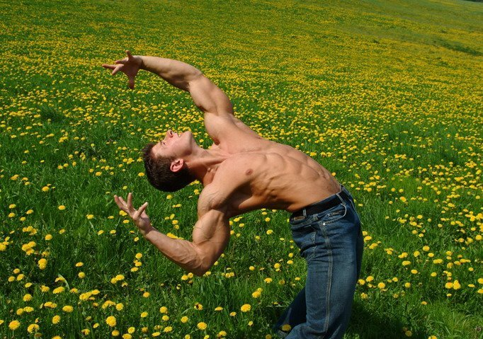 [Arched_2_Non+nude_jeans_meadow+of+flowers.jpg]