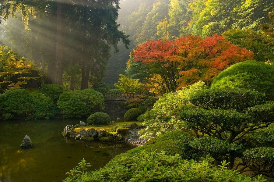 [Wallpaper_Japanese+Garden.jpg]
