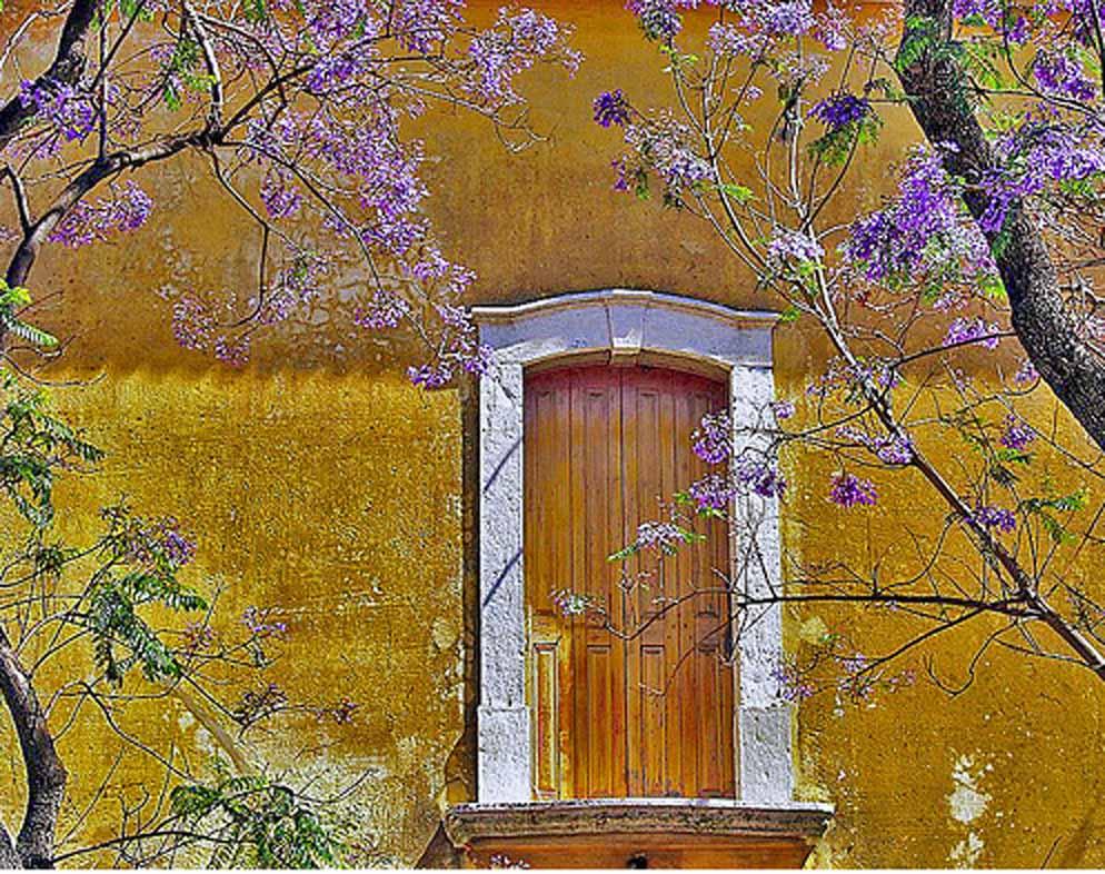 [Architecture_1_Window.jpg]