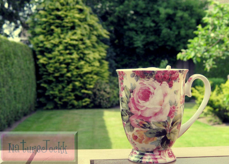 [The+Villa+gardens_3.jpg]