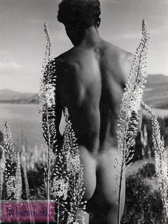[Art+male+Nude_1.jpg]