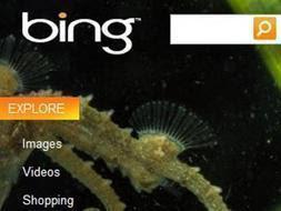 Nuevo buscador de Microsoft 'Bing'