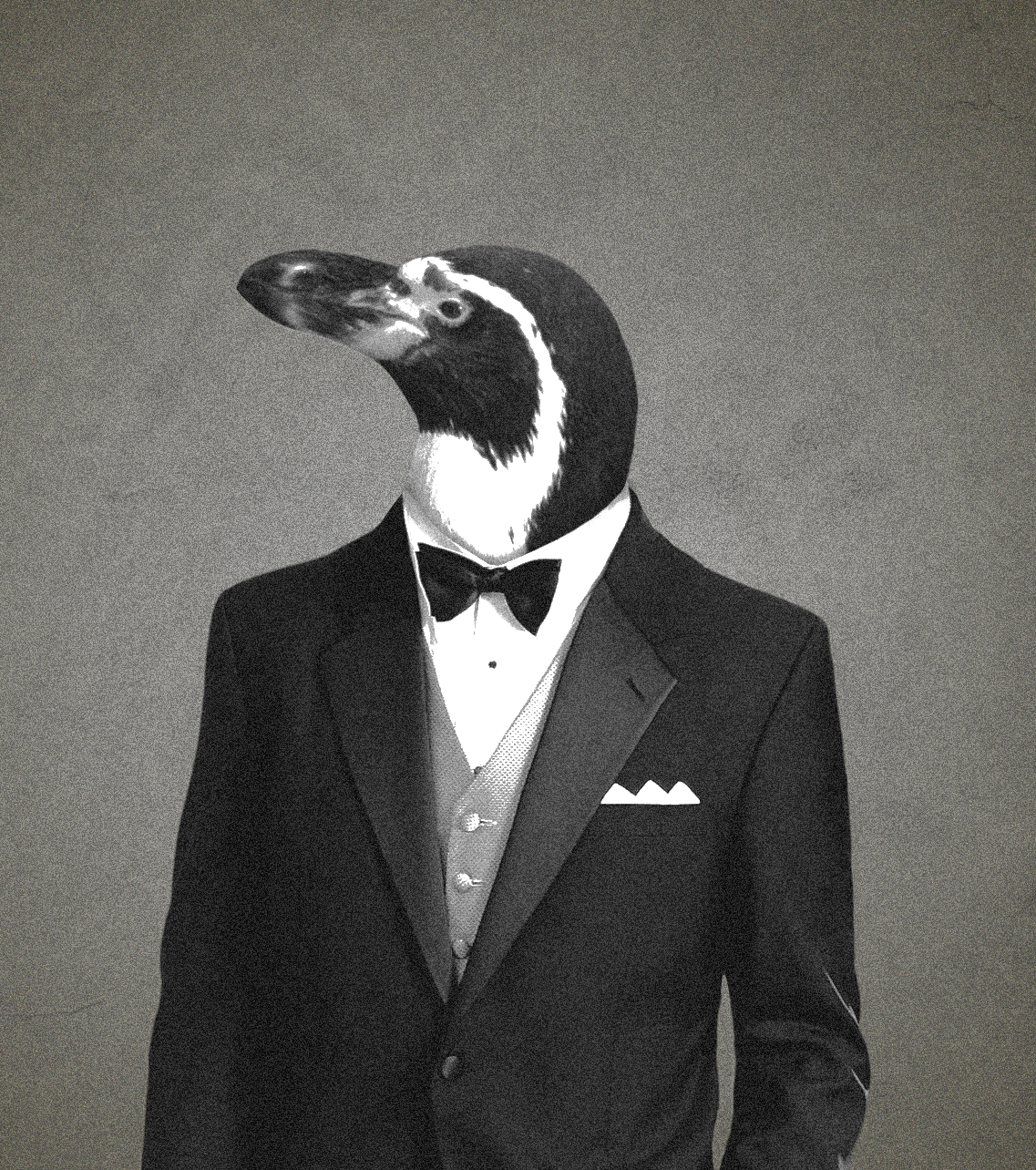 penguin with tux