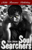 Soul Searchers by Reese Johnson