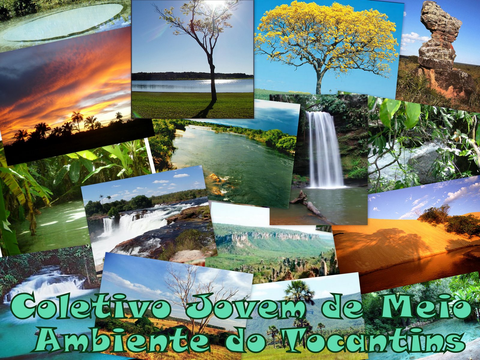 Coletivo Jovem de Meio Ambiente do Tocantins