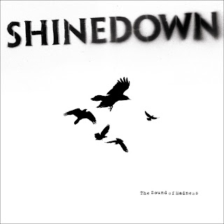 Shinedown Second Chance Lyrics