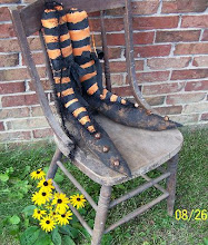 Funky Primitive Witch Shoes