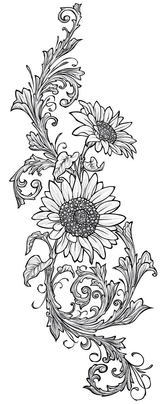 Sunflower Line Drawing : Line drawing sunflower imgkid the image kid
