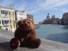 Teddy bear in Venezia