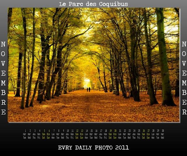 Evry Daily Photo - Calendrier Evry 2011 - Calendar Evry 2011 - Novembre 2011 - Le parc des Coquibus en Automne