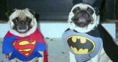 [Image: batdog_and_robin.jpg]