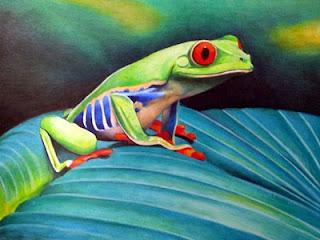Smug+Frog.jpg
