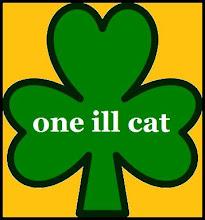 one ill cat