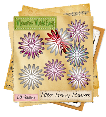 http://ladyshannonmemoriesmadeeasy.blogspot.com/2009/08/filter-frenzy-flowers-pt1-cu-ok.html